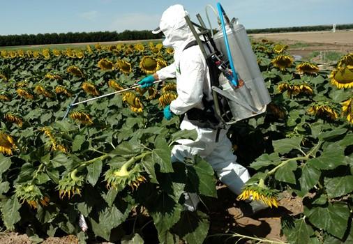 NMSU Extension to provide pesticide applicator training online