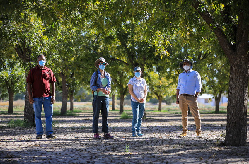UTEP leads collaborative Abiotic CO2 Project through $1.18M NSF Grant