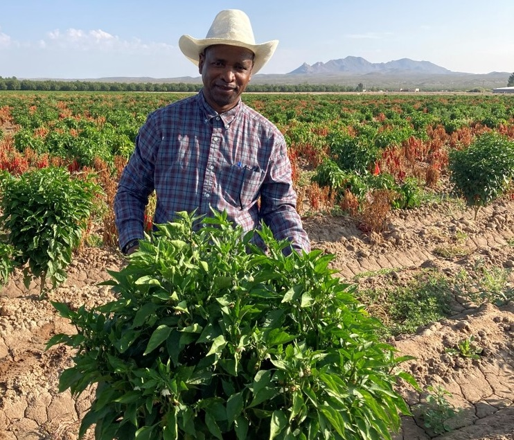 Soum Sanogo, professor of fungal plant pathology at New Mexico State University, is working in partnership with colleagues from Texas A&M AgriLife Research to study issues affecting pepper production in the Southwest. | Photo courtesy NMSU
