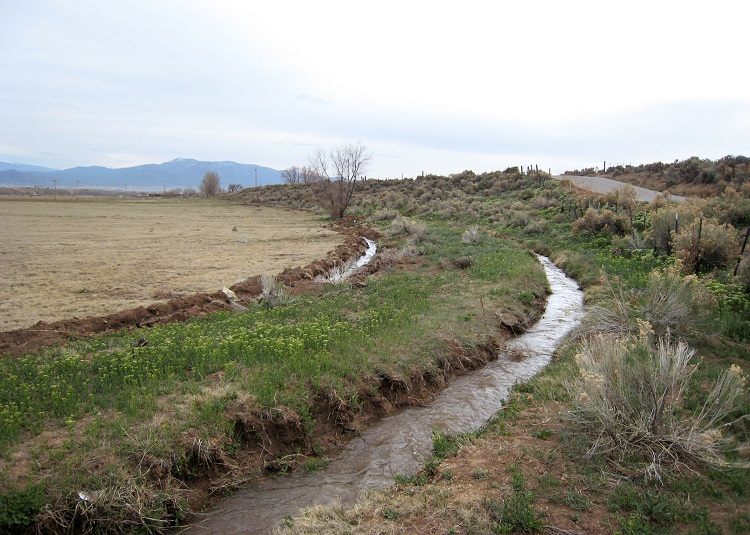 "The New Mexico State University Sustainable Agriculture Science Center at Alcalde and the New Mexico Acequia Association will host a workshop, ""Acequias and Science: A Community Conversation,"" on Zoom from 6 to 7:30 p.m. Thursday, Jan. 14 