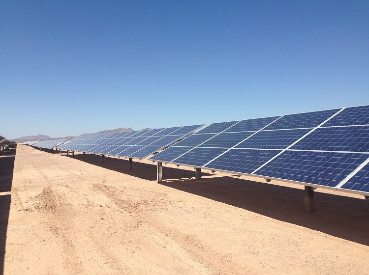 Arrowhead Innovation Fund helps Osazda Energy grow, investigate environmental effects of solar cells