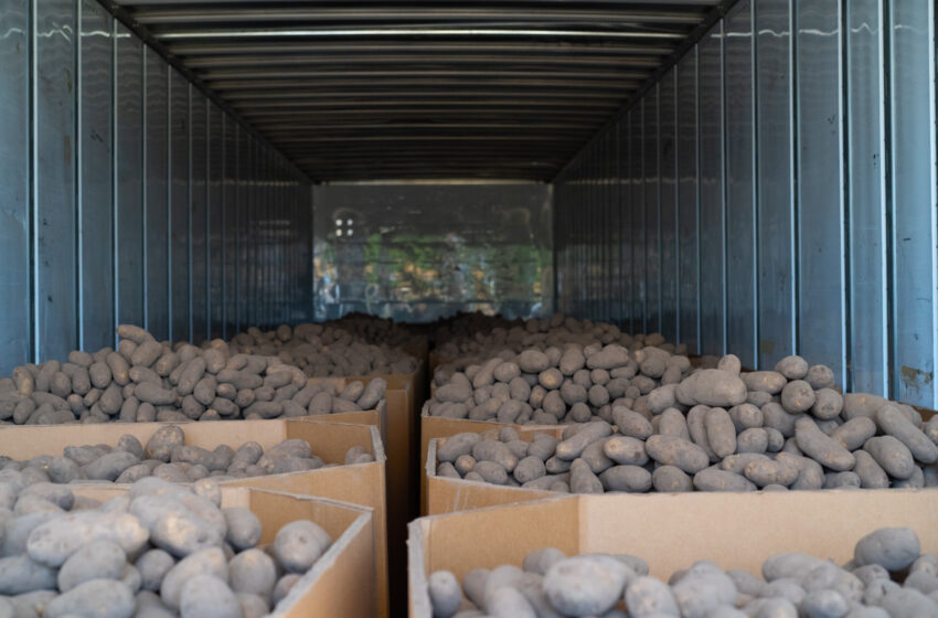 Chipotle, Farmlink donate 340,000 lbs. of food to Texas food banks, Including in El Paso