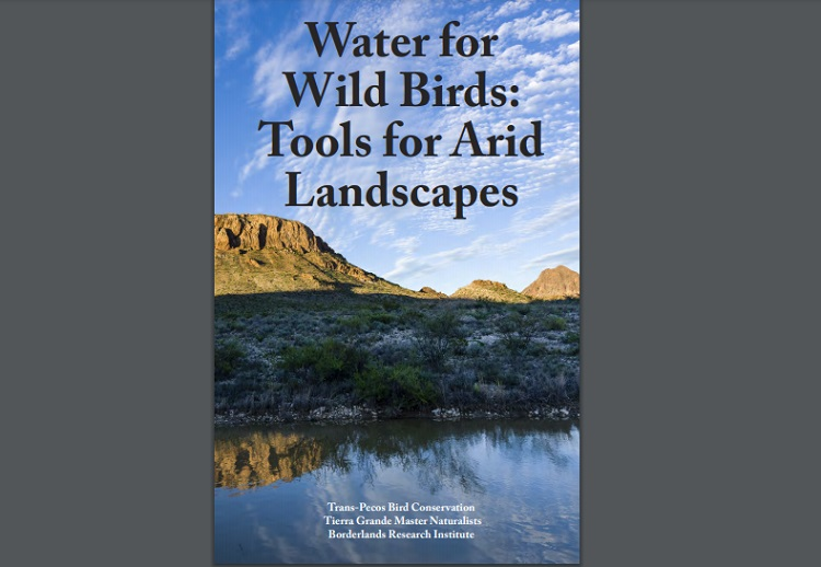 'Water for Wild Birds' Publication now available in West Texas