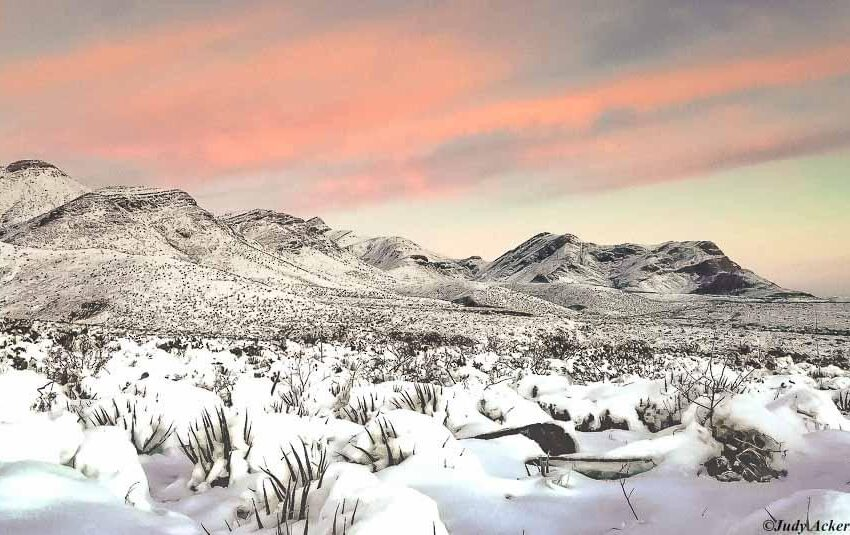 Op-Ed: Castner Range National Monument Act is good news for El Paso