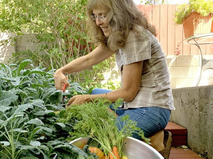 NMSU Seed to Supper program creates virtual gardening community, offers free online course