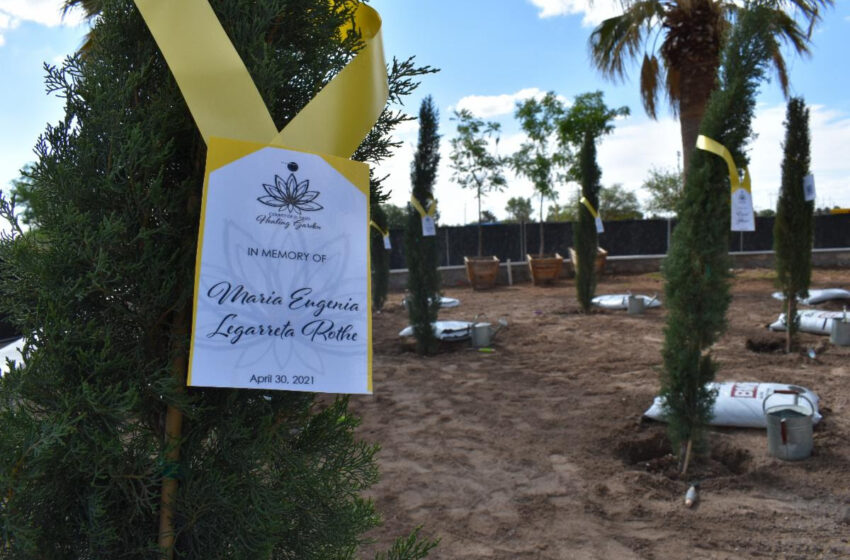Unveiling of El Paso County's Healing Garden set for August 3rd