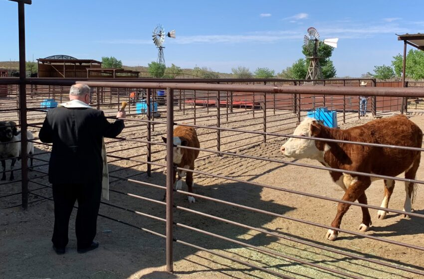 NM Farm & Ranch Heritage Museum continues Blessing of the Fields tradition