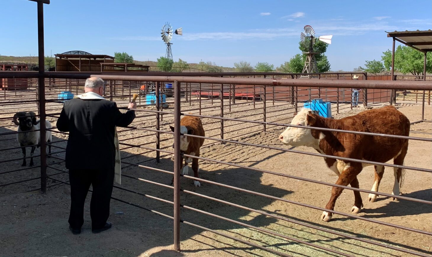 Bishop Peter Baldacchino of the Diocese of Las Cruces blessing some of the livestock at the New Mexico Farm & Ranch Heritage Museum on May 14.