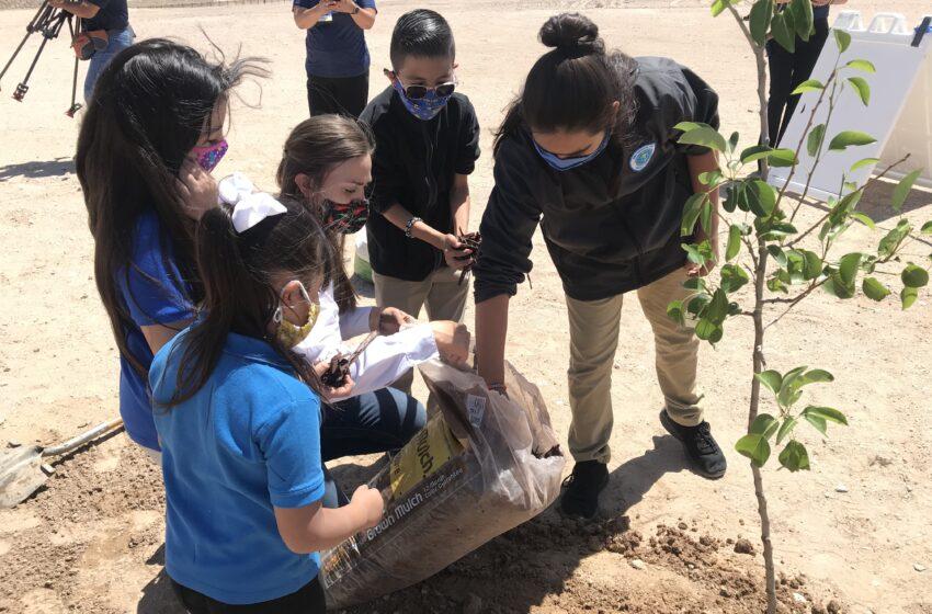 IDEA Public Schools opens ninth Campus Farm at IDEA Horizon Vista