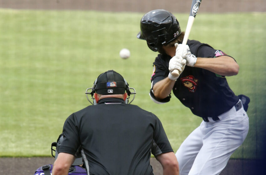 Skeeters stop Chihuahuas 7-3 in first-ever contest