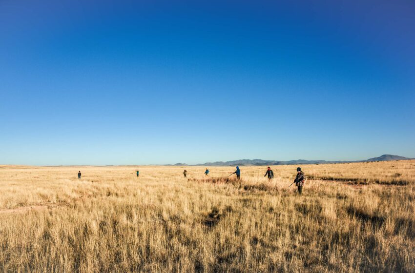 NFWF, ConocoPhillips Award SPIRIT of Conservation Grant to Borderlands Research Institute