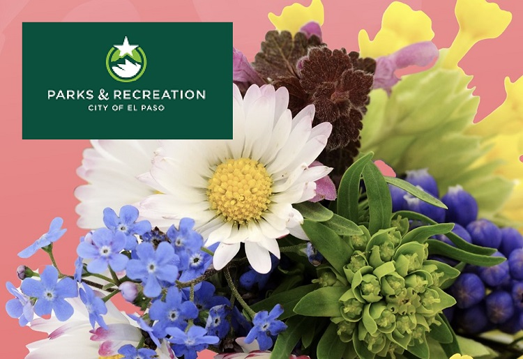Parks and Recreation to Host Mother's Day Celebration Saturday