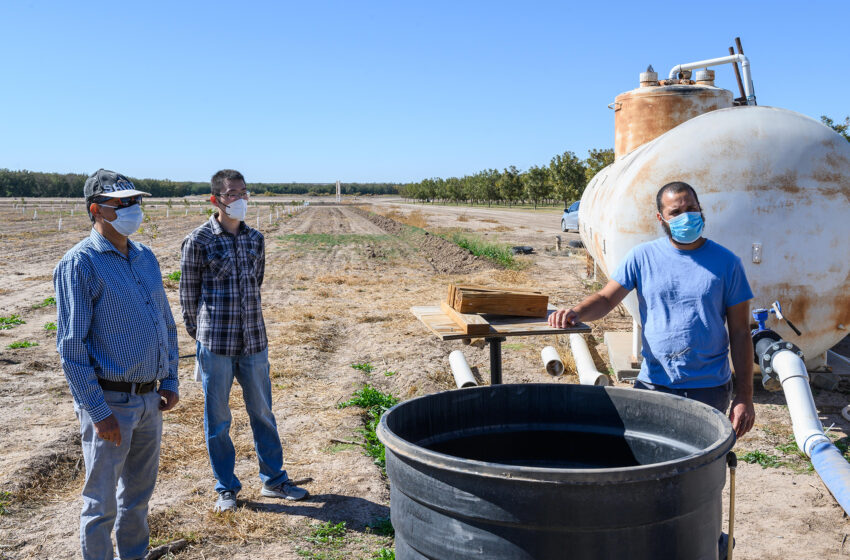 Nexus program taps into NMSU expertise to solve food, energy and water challenges
