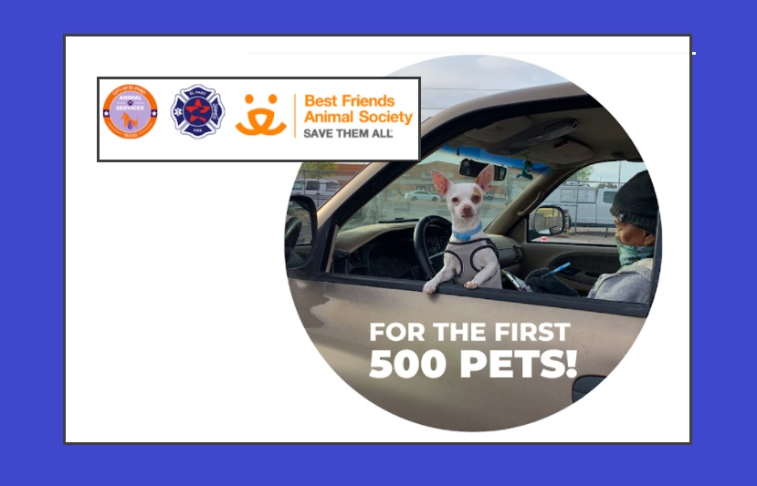 City to offer drive thru clinic for Pet Services, COVID-19 Vaccinations for Owners