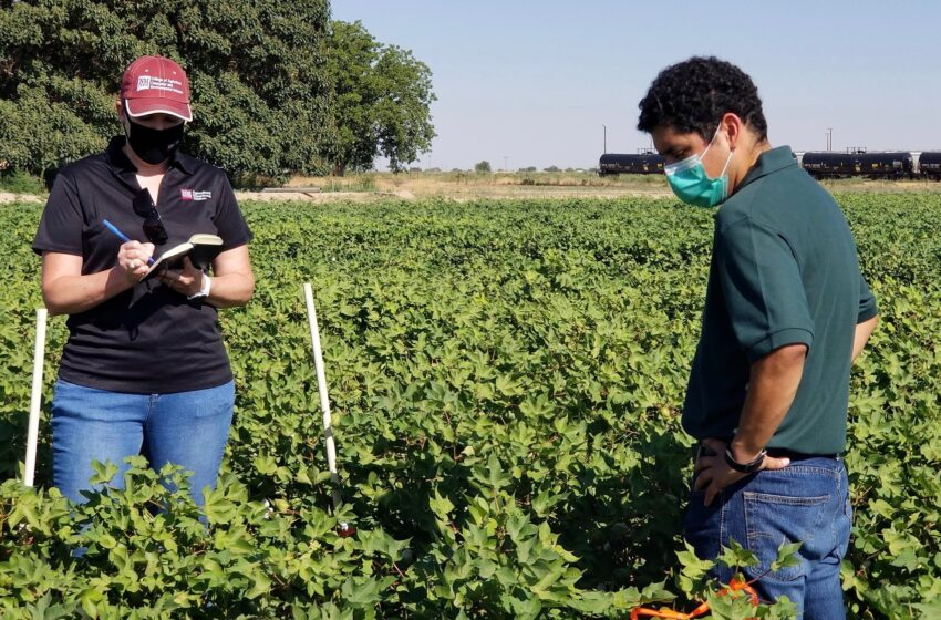NMSU student duo earn accolades for research presentations at international conference
