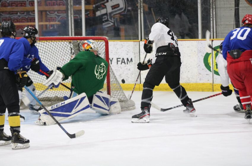 Rhino Hockey Summer continues with Saturday's All Star Game