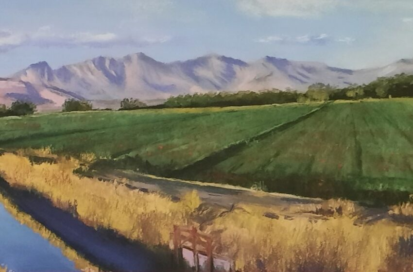 'O Fair New Mexico' art show at Farm & Ranch Museum features Las Cruces couple