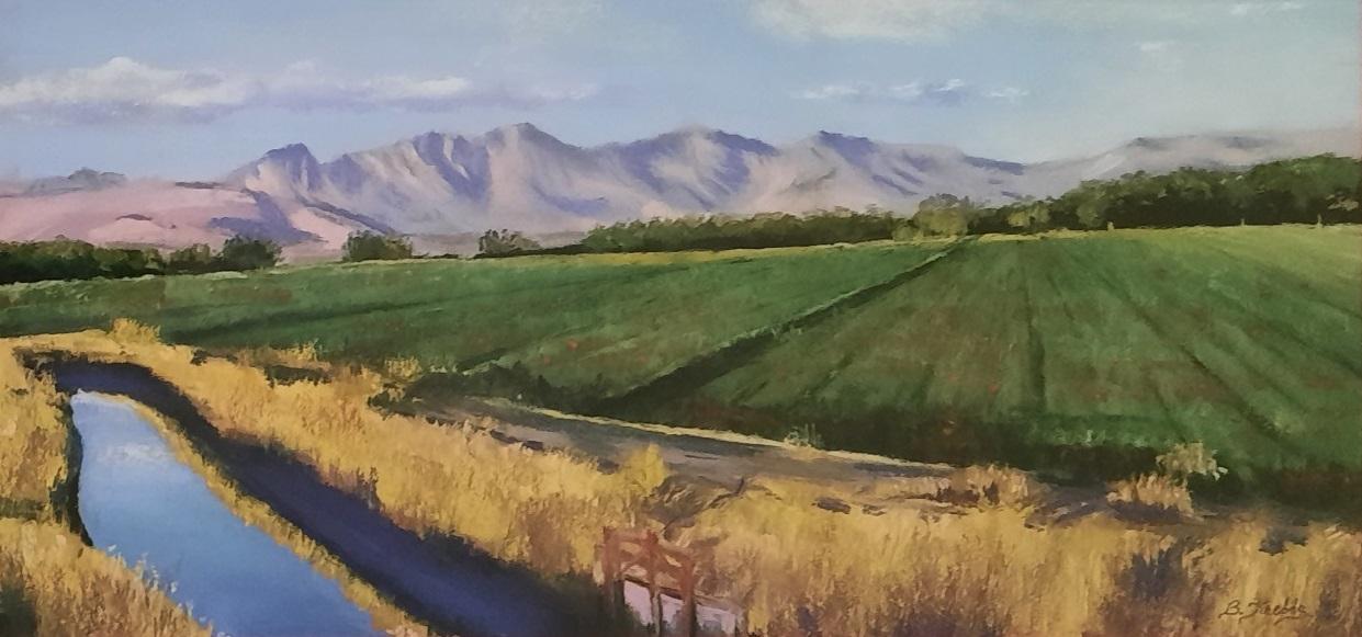 Mesilla Valley Gold, by Betty Krebbs.
