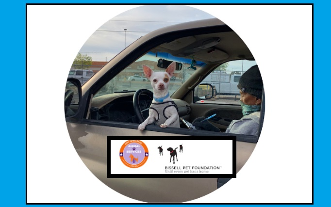 Animal Services set to host Drive-Thru Clinic, Offers Free Pet Services