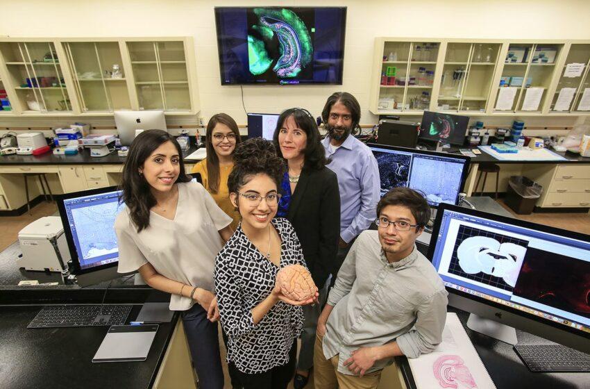 UTEP Receives $3M NSF Grant to Enhance STEM Education for Hispanic Undergrads