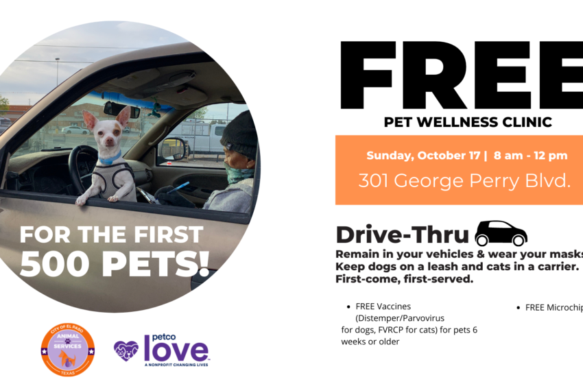 City, Petco Love partner for Vaccinate One Million Pets campaign